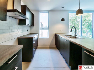 kitchen-new-condo-for-sale-montreal-sud-ouest-quebec-province-en-1600-8061346-WEB